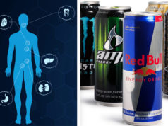Energy Drinks - Auswirkungen auf Organe