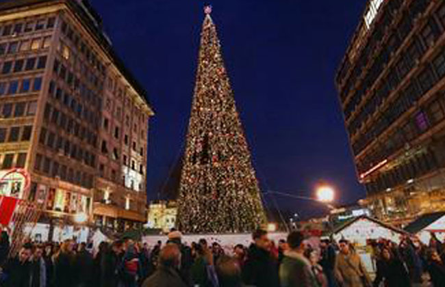 Belgrad Christbaum