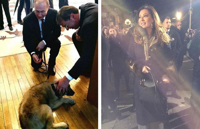 Putin-in-Serbien-Kommentar-Ceca-Sarplaninac-Kommentar