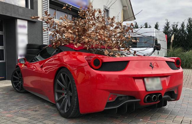 Feier Ferrari Badnjak Party