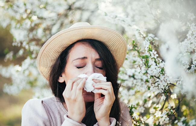 Allergie-Typen-Gesundheit