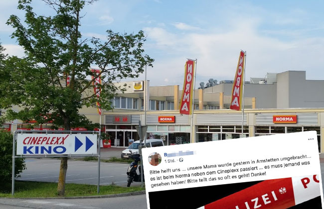Hilferuf-ermordete-Mutter-Tochter-Facebook-Amstetten1
