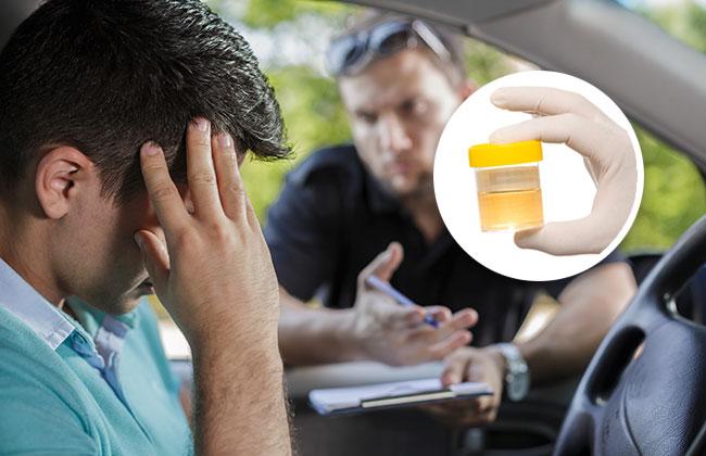 Sperma-statt-Urinprobe-Verkehrskontrolle