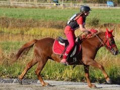 Pia mit ihren Pferd