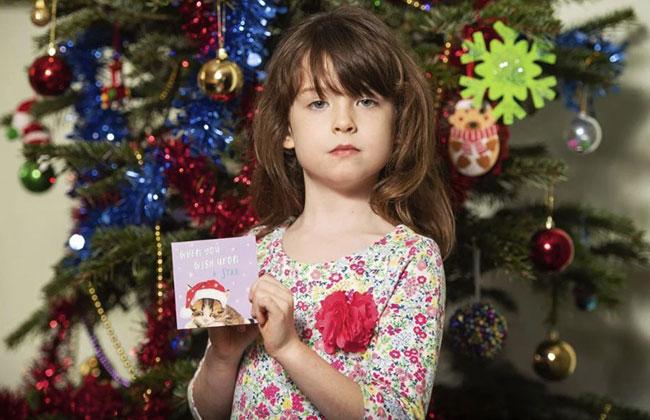 Weihnachtskrate